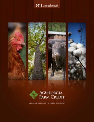 Year End 2011 - AgGeorgia Farm Credit
