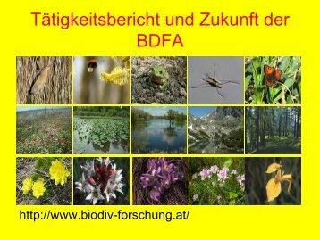Schindler: Tätigkeitsbericht und Zukunft der BDFA
