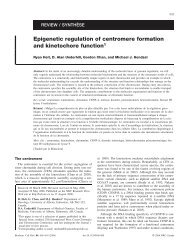 Epigenetic regulation of centromere formation and kinetochore ...
