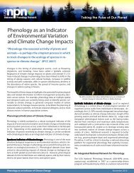 Phenology as an Indicator of Environmental Variation and Climate ...