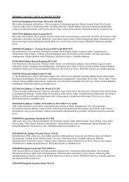 2011-04-10 VAASA KV Anita Alatalo.pdf