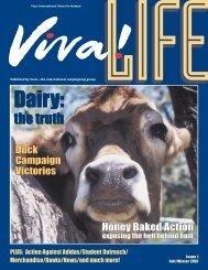 Life Issue 1 - Viva! USA