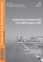 Foreign Direct Investment (FDI) in the MEDA region in 2005 - Anima