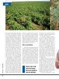 empreendedor | fevereiro 2012 - Texbrasil - Page 3