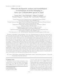 Molecular phylogenetic analyses and morphological re ... - JSCC