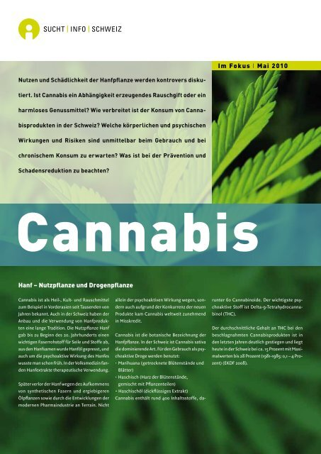 Fokus Cannabis - Rauchfreie Lehre