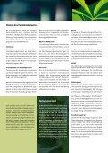 Fokus Cannabis - Rauchfreie Lehre - Seite 3