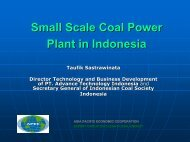 Small Scale Coal Power Plant in Indonesia - Expert Group on Clean ...