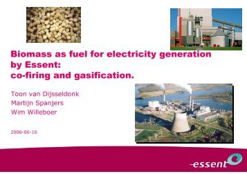 Biomass as fuel for electricity generation by Essent: co ... - Biorefinery