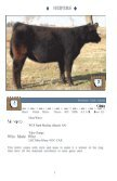 heifers - Iowa Beef Expo - Page 6