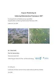 Seegras-Monitoring im Schleswig-Holsteinischen ... - BLMP Online