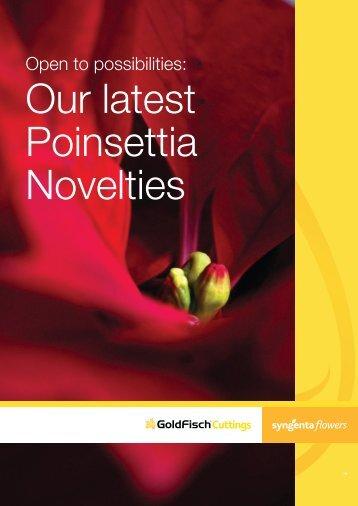 2012 Poinsettia Novelties