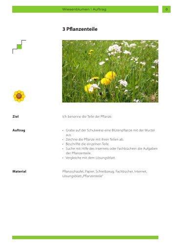 Pflanzenteile Magazine