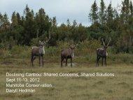 HEDMAN Daryll Manitoba herds