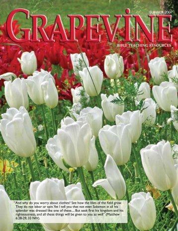 SUMMER 2007 - Bible Teaching Resources