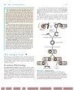 Biotechnology: Friend or Foe? From Plants - bib tiera ru static - Page 2