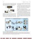 Biotechnology: Friend or Foe? From Plants - bib tiera ru static - Page 3