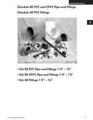 Sch 80 PVC Pipe and Fittings 1/4 - Plastic Systems