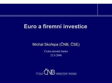 Euro a firemní investice, Michal Skořepa