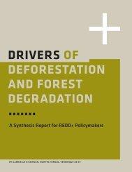 Drivers of Deforestation and Forest Degradation: A ... - Gov.uk