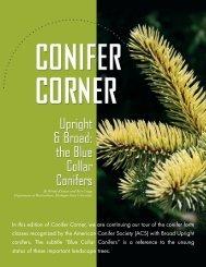 Conifer Corner - Department of Horticulture - Michigan State University