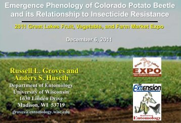 Emergence phenology of CPB and its relationship to insecticide ...