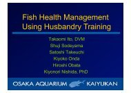 Fish health management by husbandry training