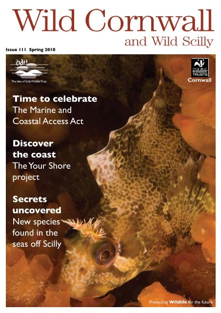 Time to celebrate The Marine and Coastal Access Act Discover the ...