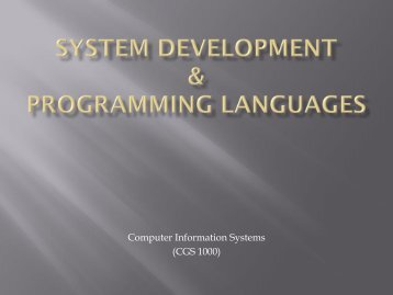 System Development & Programming - Tiona Consulting