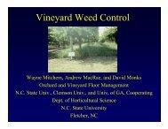 Vineyard Weed Control