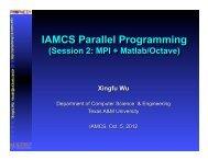 IAMCS Parallel Programming - TAMU Computer Science Faculty ...