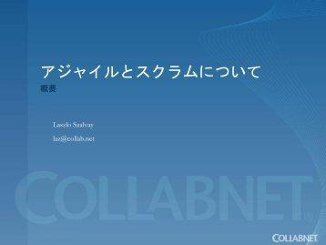 CollabNet Corporate Powerpoint Template - XLsoft.com