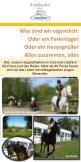 Flyer 2013 - Ferienclub Popcorn - Seite 6