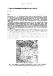 KOS, P.: Výzkum středověké vápenky v Mokré u Brna, s. 3.