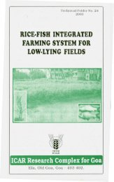 rice-fish integrated farming system for low-lying fields