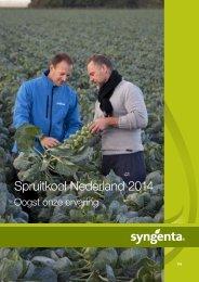 Spruitkool Nederland 2013 - Syngenta