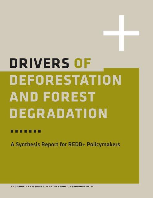 6316-drivers-deforestation-report