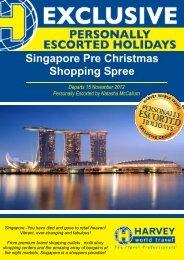Singapore Pre Christmas Shopping Spree Flyer