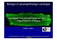 Dysrégulations énergétiques au cours de l'insuffisance cardiaque ...