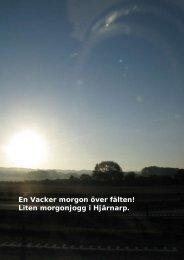 En Vacker morgon över fälten! Liten morgonjogg i ... - physiochraft