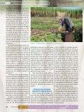 22 www.cipanet.com.br 22 - Sucre Ethique - Page 7