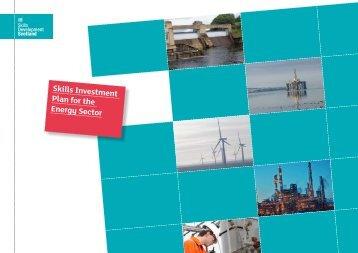 Skills Investment Plan for the Energy Sector - Skills Development ...