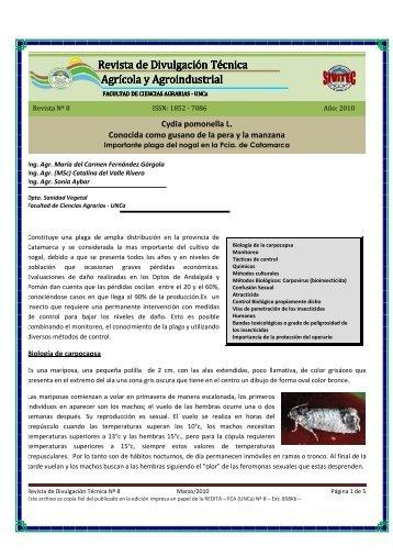 Cydia pomonella L. CONOCIDA COMO GUSANO DE LA
