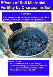 Effects of Soil Microbial Fertility by Charcoal in Soil Effects ... - Eprida