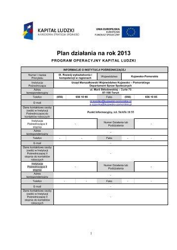 Plan Działania na rok 2013 dla Priorytetu IX Rozwój ... - mojregion.eu