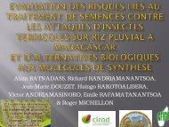 en traitement de semences - INRA Montpellier