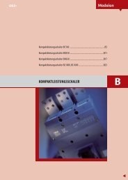 ÜBERSICHT Leistungsschalter MODEION download (1,10 ... - roger.at