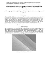 Pulse Shaping for Micro Cutting Applications of Metals - Laser ...