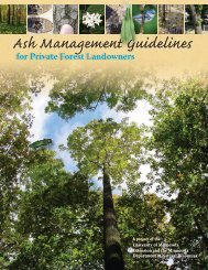 Ash Management Guide for Private Forest Landowners
