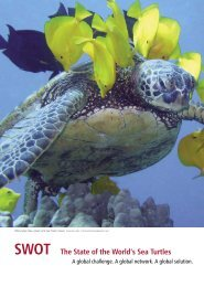 SWOTReport 2_Final.indd - The State of the World's Sea Turtles